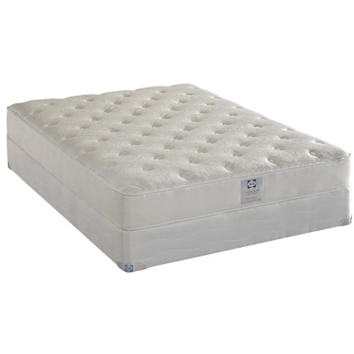 Sealy Comfort Series Avery Harbor Queen Firm Latex Mattress