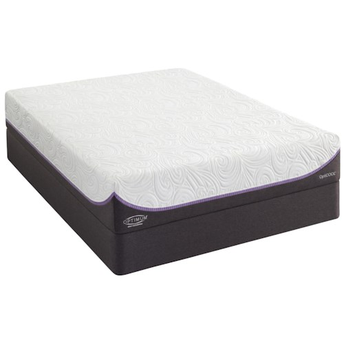 Sealy Optimum 2.0 Inspiration Full Firm Mattress and Ease Adjustable Base