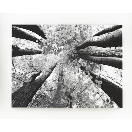 Signature Design by Ashley Wall Art Ananya (Black/White) - Wall Art
