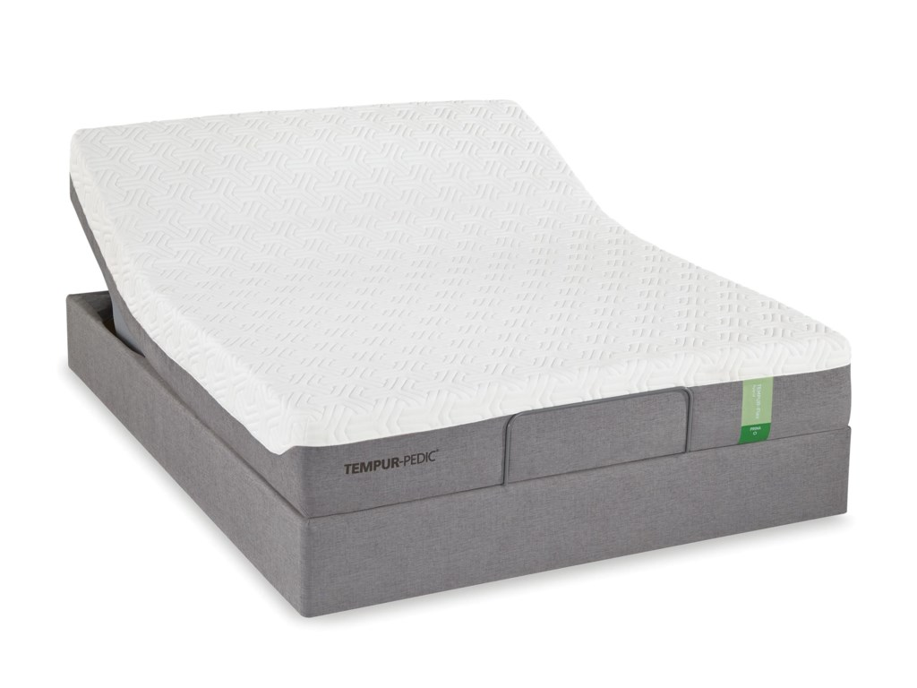 Mattress is Similar to Image Shown Image Shown May Not Reflect the Size Idicated
