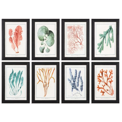 Uttermost Art Colorful Algae Framed Art, S/8