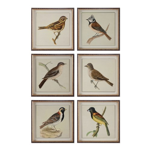 Uttermost Art Spring Soldiers Bird Prints, S/6