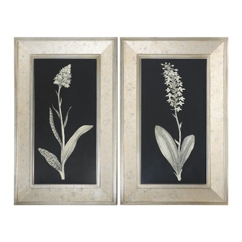 Uttermost Art Antique Floral Study Framed Art, Set of 2