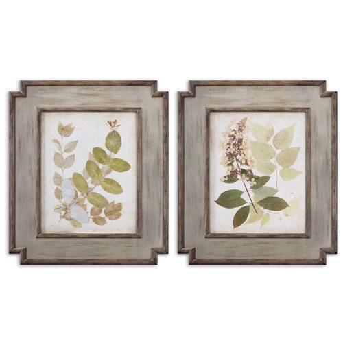 Uttermost Art Natures Collage Set of 2