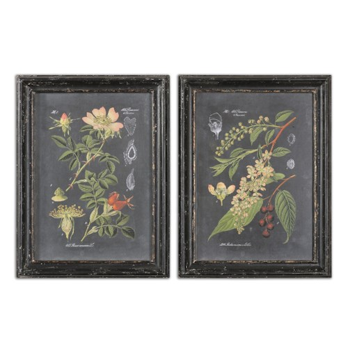 Uttermost Art Midnight Botanicals Wall Art Set of 2