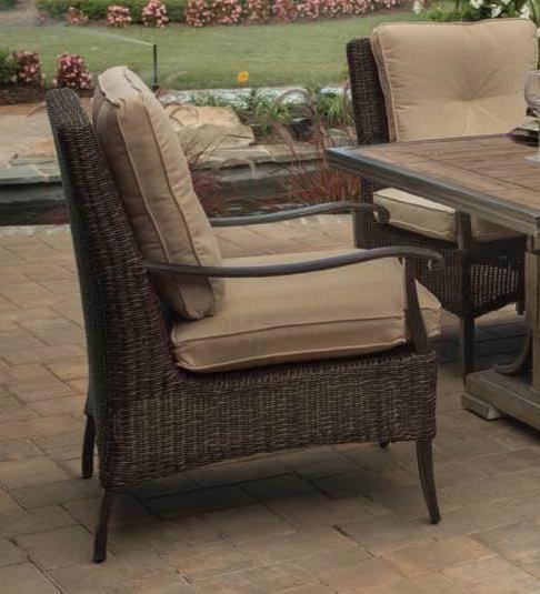 Agio Franklin 2016Alumicast Woven Cushion Dining Chair