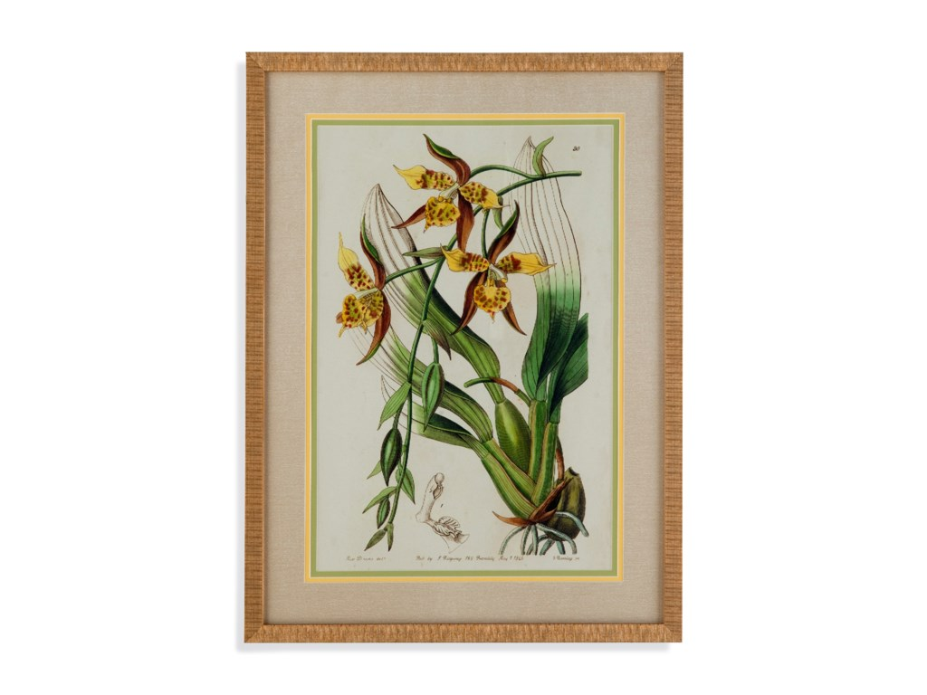 Bassett Mirror Old WorldSpring Orchid I
