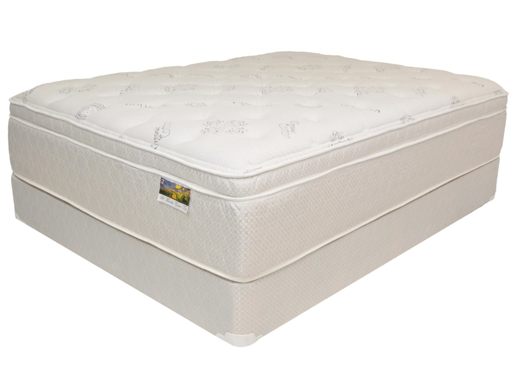 Corsicana Oak Grove EuroQueen Euro Top Mattress Set