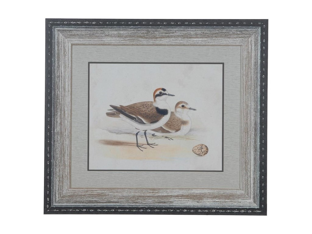 Crestview Collection Prints and PaintingsShorebirds 5