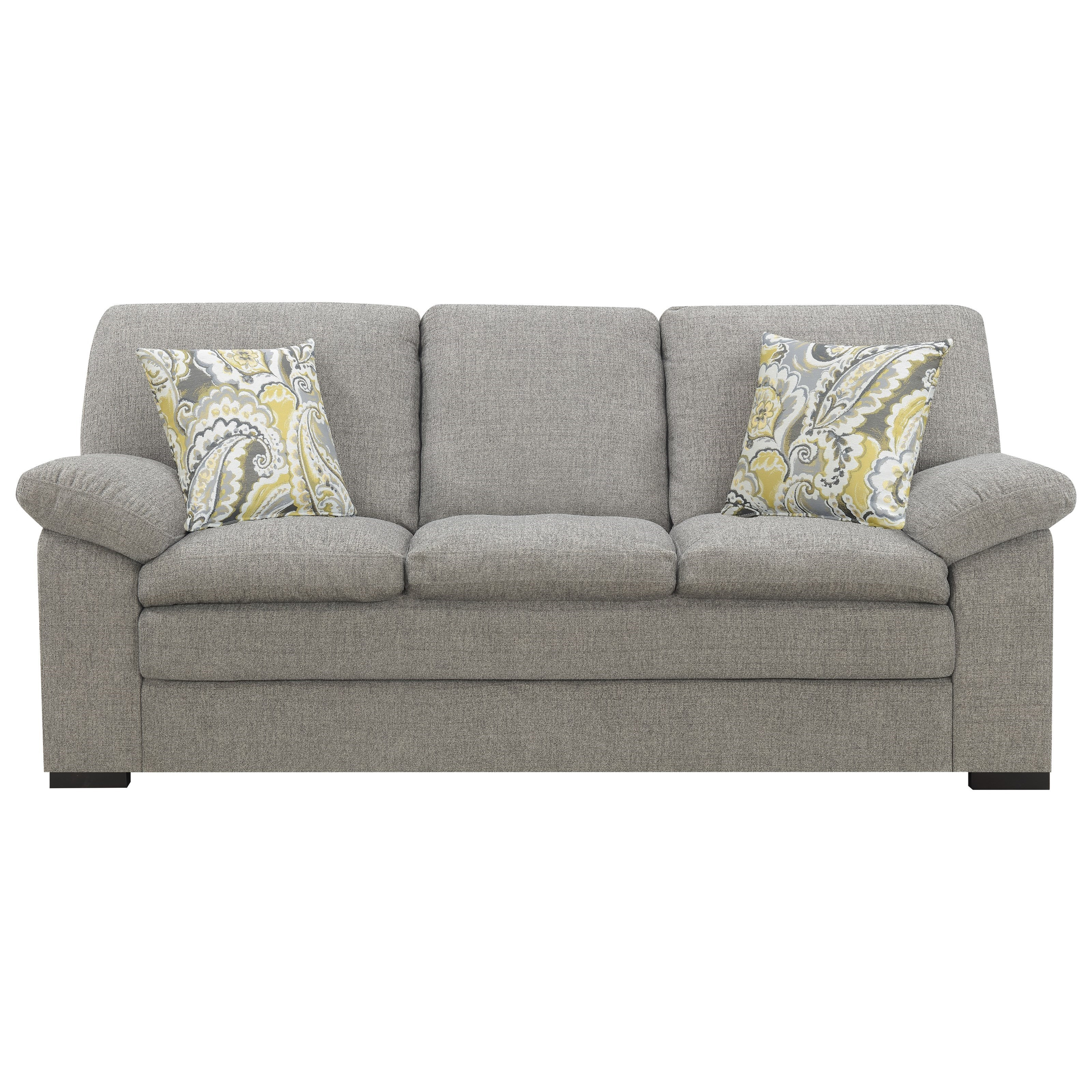 Transitional Sofa with 2 Accent Pillows