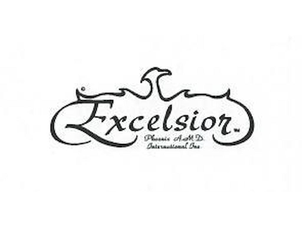 Excelsior Leather & Bycast & VinylSuper Stain $4001-$5000