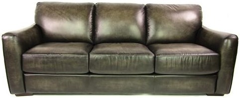 Dante Leather Sprintz Transitional Sofa With Block Feet And Flared Arms
