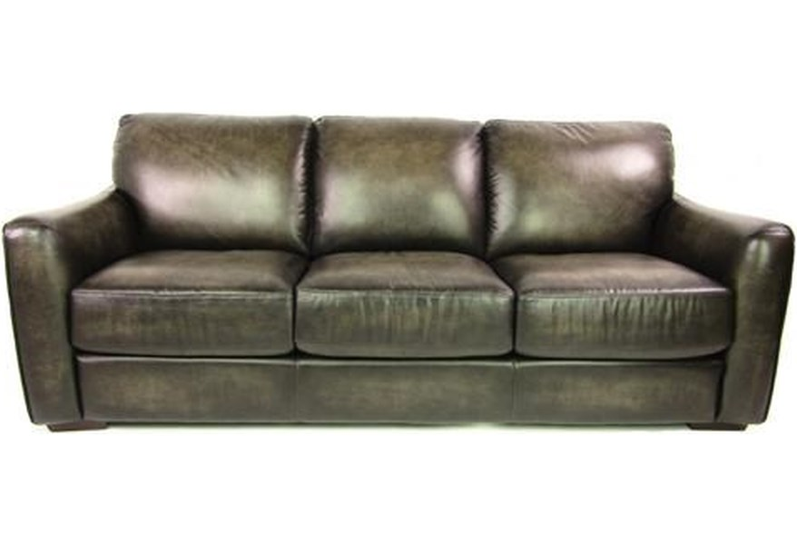 Leather Sprintz Dante Transitional Sofa