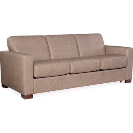 Sofa with Sleeper
