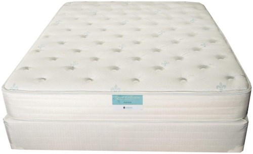 Jamison Bedding Hotel Resort Bayside Twin Extra Long Cushion Firm Mattress and Foundation