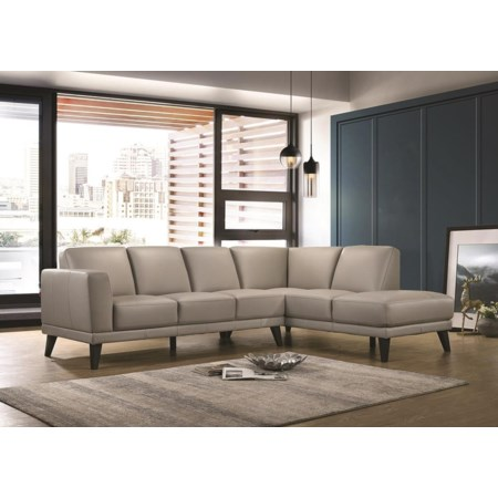 2 Piece 100% Top Grain Leather Sectional