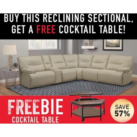 Spartan Sectional with Freebie!
