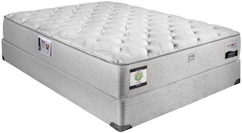 by states corpus leopard st united photo randy appointment biz mattresses mattress christi of tx