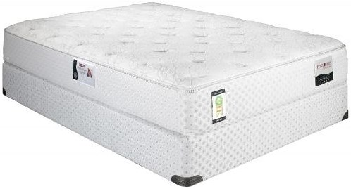 Restonic ComfortCare Atlantis Queen Cushion Firm Mattress and Foundation