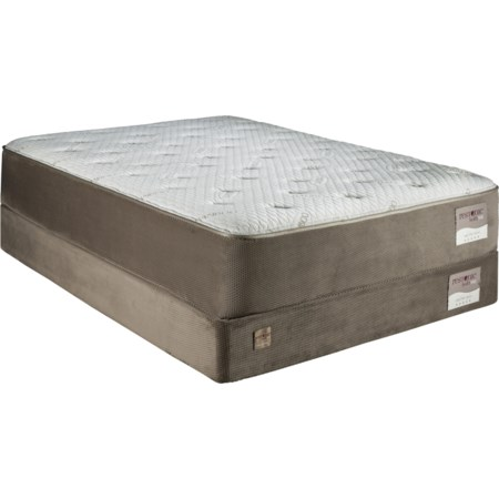 Queen Lux Plush Memory Foam Mattress Set