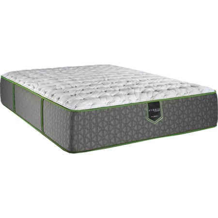 "Queen 13"" Plush Hybrid Mattress"
