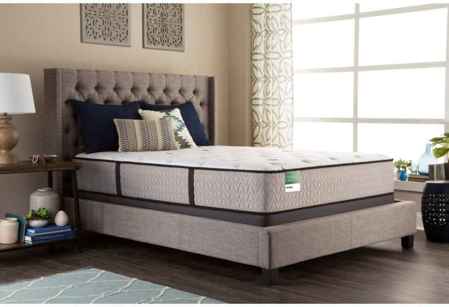 Sealy Surrey Lane Twin Extra Long 14 1 2 Firm Mattress And 5 Low