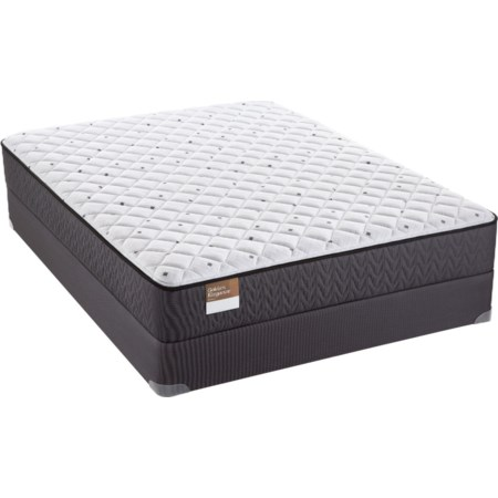 "Queen 10"" Firm Mattress Set"