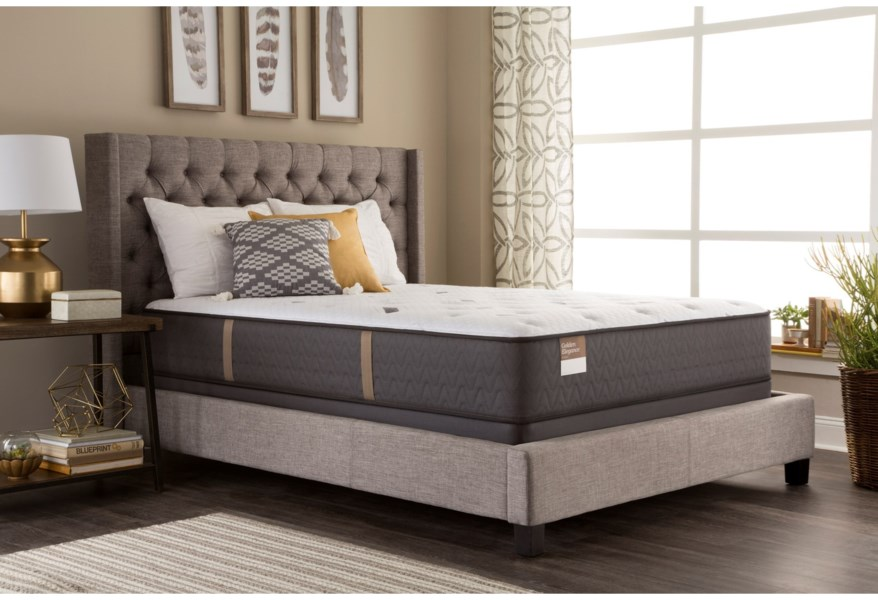 Sealy Impeccable Grace Firm 520425 Txl Supflxlp Txl Twin Extra