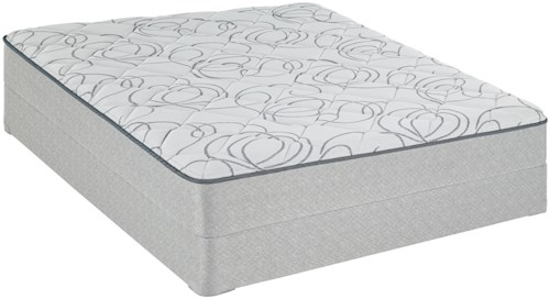 Sealy Sealy Brand Level 2 Twin Firm Mattress and Foundation