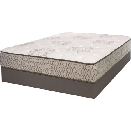 Queen Cushion Firm Mattress