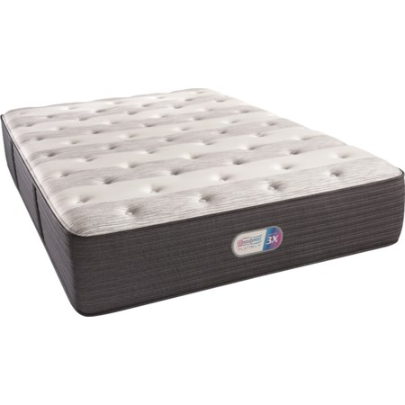 "Twin 14 1/2"" Plush Coil on Coil Mattress"
