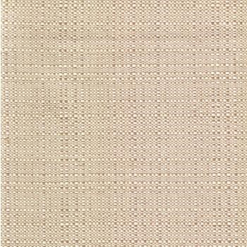 Champagne-Colored Canopy Fabric