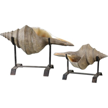 Conch Shell Sculpture Set of 2
