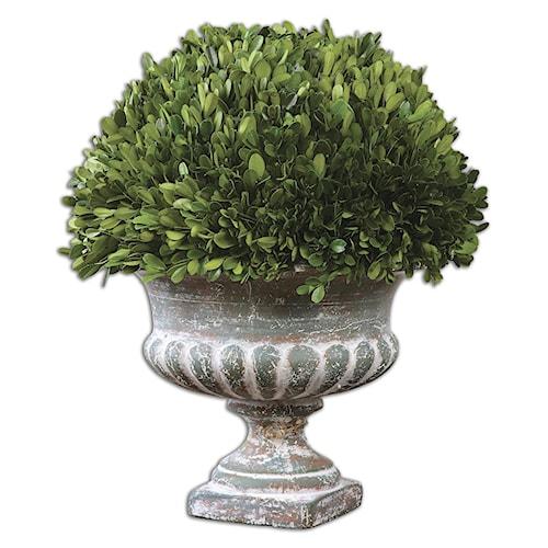 Uttermost Accessories Preserved Boxwood Garden Urn