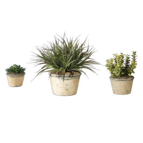 Uttermost Accessories La Costa Greenery, Set/3