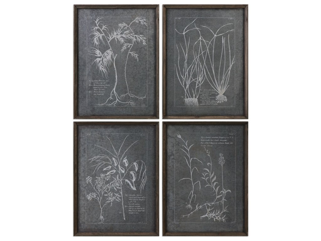 Uttermost Framed PrintsRoot Study (Set of 4)