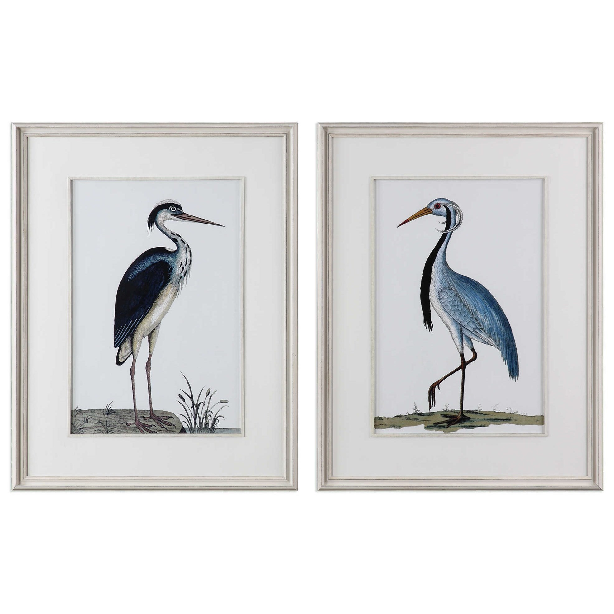 Uttermost Art Shore Birds Framed Prints Set Of 2 | Miskelly Furniture | Wall  Decor