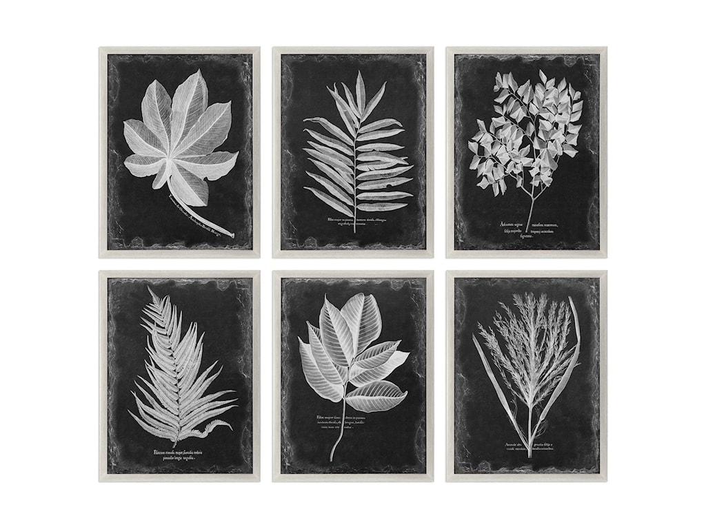 Uttermost ArtFoliage Framed Prints, Set of 6