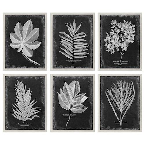 Uttermost art foliage framed prints set of 6