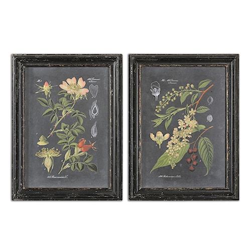 Uttermost Art Midnight Botanicals Wall Art Set of 2