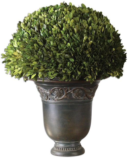 Uttermost Botanicals Preserved BoxwoodGlobe