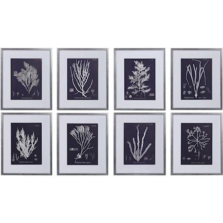 Coral On Navy Framed Prints Set/8