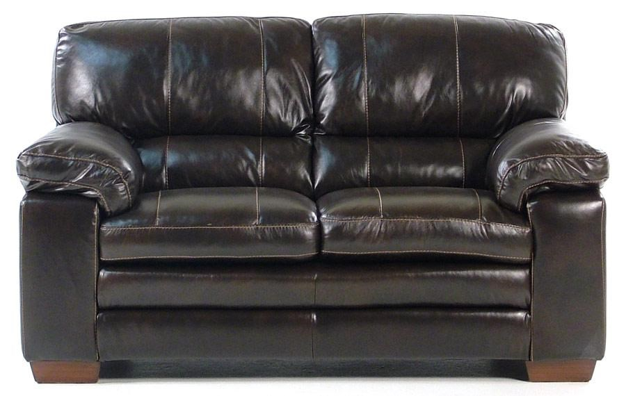 Madison Manor ThompsonLeather Loveseat