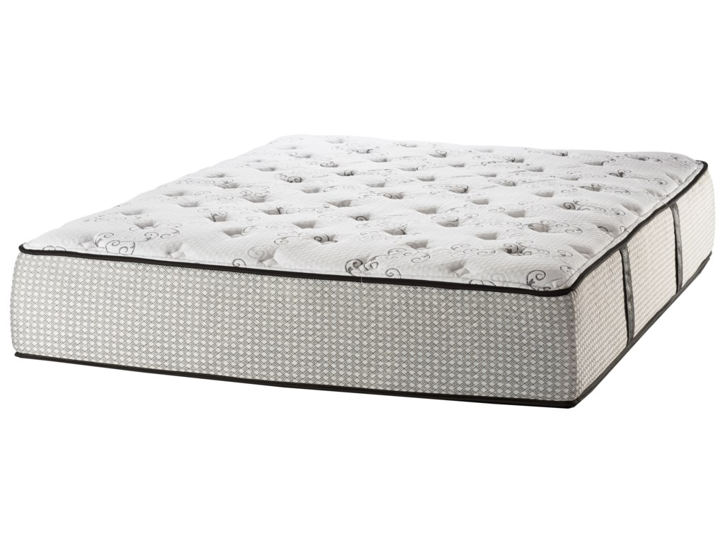 White Dove Mattress Cambridge State St PlushQueen Plush Mattress