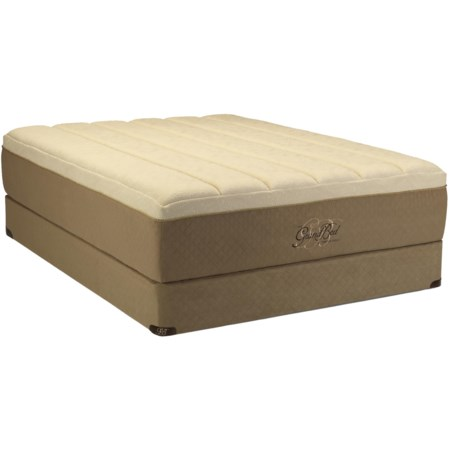 Queen GrandBed and High Profile Foundation <i>by</i> Tempur-Pedic®